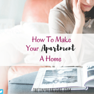 How To Make Your Apartment Homier