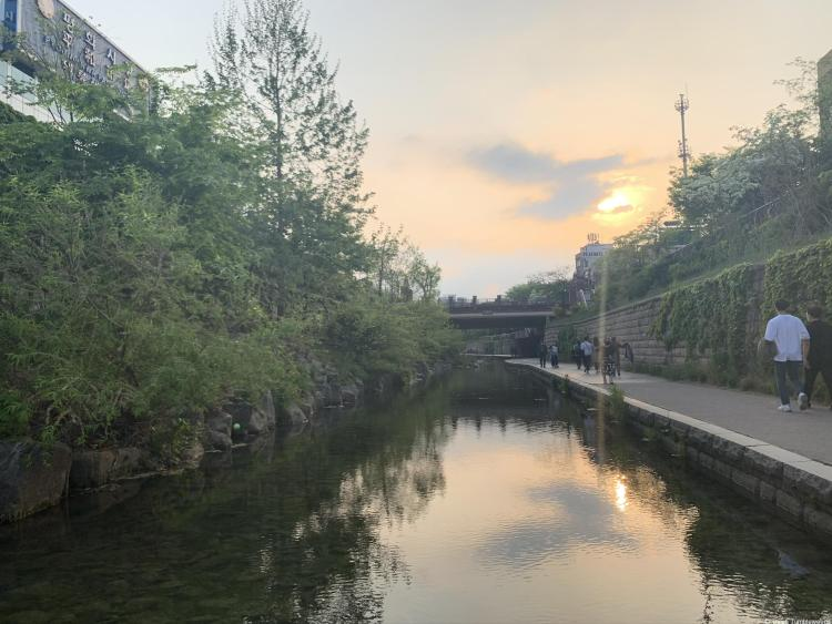 The sun is setting on a dark, calm stream set down from the street with a walking path on the right. Seoul travel guide there are trees and plants along the left side.