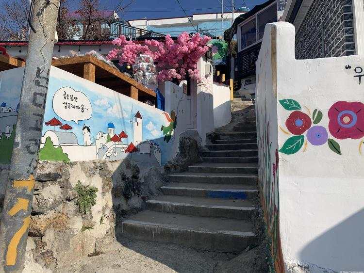 A typical cute mural village in Tongyeong travel guide. Stairs leading upwards into the village, red camellias painted on the right and a blue drawing of the village on the left. A fake pink flower tree is in the background.