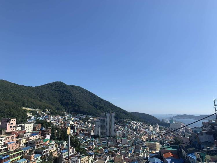 hundreds of brightly colored buildings descend down the mountain valley. The valley leads to the sea, which can just be seen in this Busan travel guide. Telephone wires are positioned steeply down the mountain.