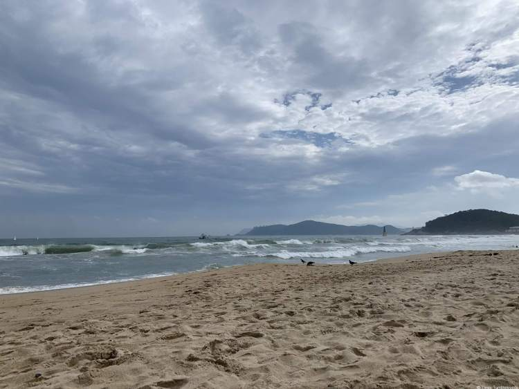 A cloudy day with waves a shade of jade green and rough. The sand is also rough and damp looking, with a tree covered low mountain outcropping into the sea.