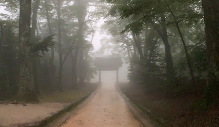 a sand colored pavement path stretches down the middle to a gate with a large roof shrowded in mist. On either side of the path are green trees emerging from the mist.