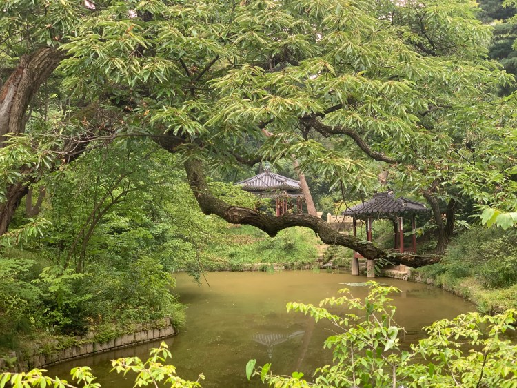 Korean UNESCO sites the pond in changdeokgung palace