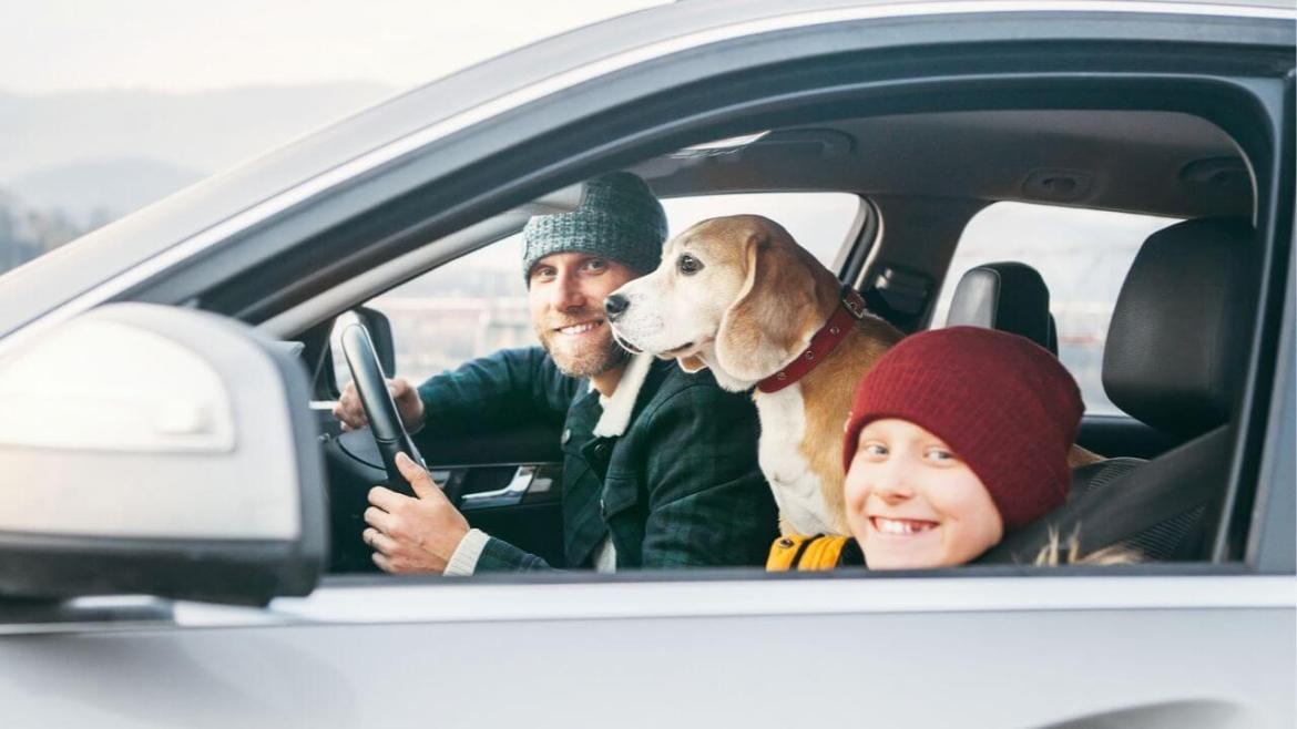 Dad, kid, and dog in the car.