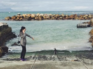 #ThrowbackThursday #1: Terrorizing the Penguins at Betty's Bay
