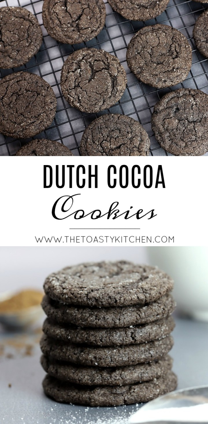 Dutch Cocoa Cookies by The Toasty Kitchen