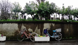 Yanaka cemetery Tokyo rain bikes at rest