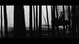 Black Cat Kuro neko bamboo night horse bamboo