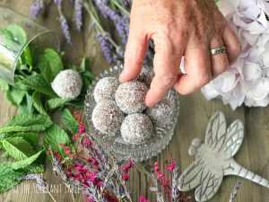 Chocolate peppermint fudge bliss balls