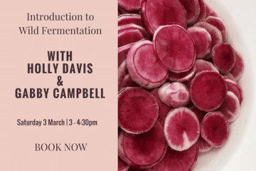 Introduction to Wild Fermentation