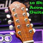 Michael Kelly TRIAD 10E - 10 String Acoustic Guitar