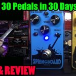 ANALOG Reverb & Delay by VFE Pedals - Springboard and Yodeler - 30 Pedals in 30 Days 2015
