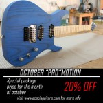 ACACIA Guitars - PROmotion 2016