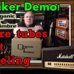 300W Speaker for Modeling or TUBE Amps!  Organic Timbre Rhapsody G12F Speaker Demo!