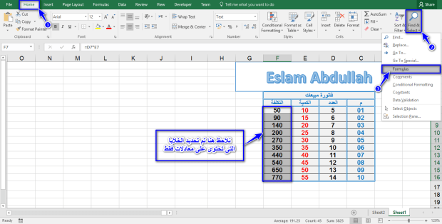 اسلام عبدالله-حماية الخلايا التى تحتوى على معادلات