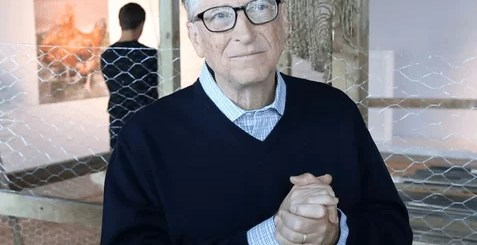 Bill Gates is using chickens to end poverty pix