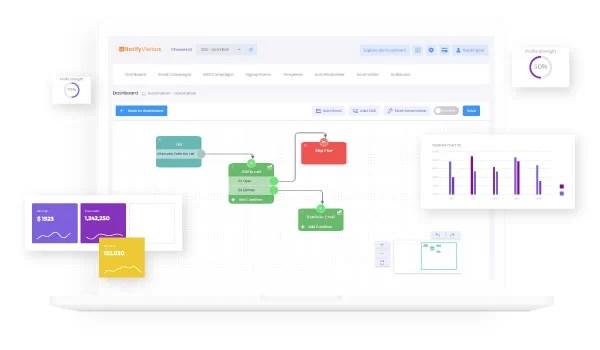 Develop Marketing Automation Strategy