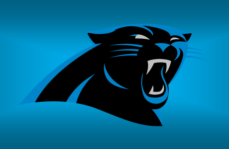 Panthers, Carolina Panthers