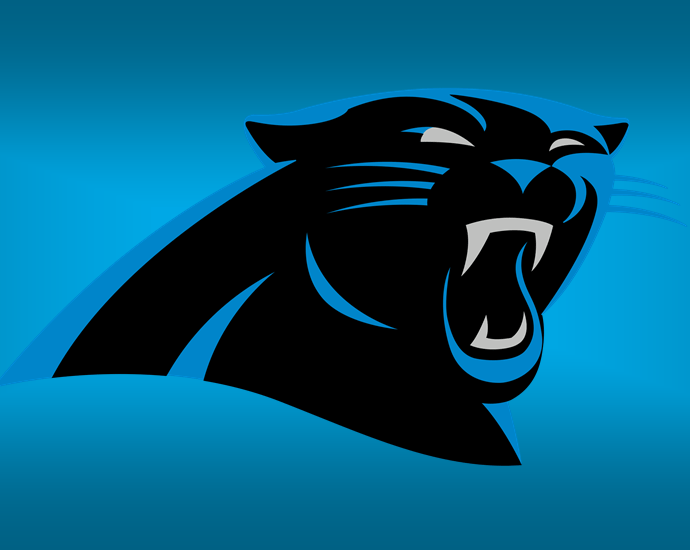 Panthers, Carolina Panthers 2020