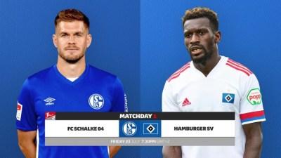 Bundesliga 2 Kicks off today, Schalke hosts Hamburger