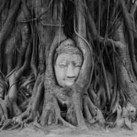 Third Thai's A Charm - Ayutthaya (Day 2: Temples)