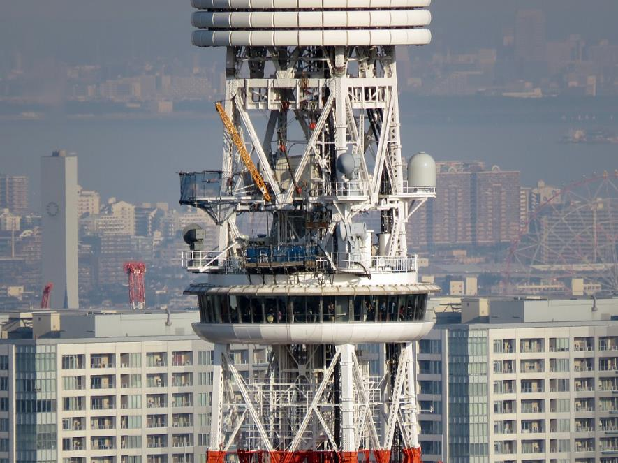 The Special Observatory of Tokyo Tower