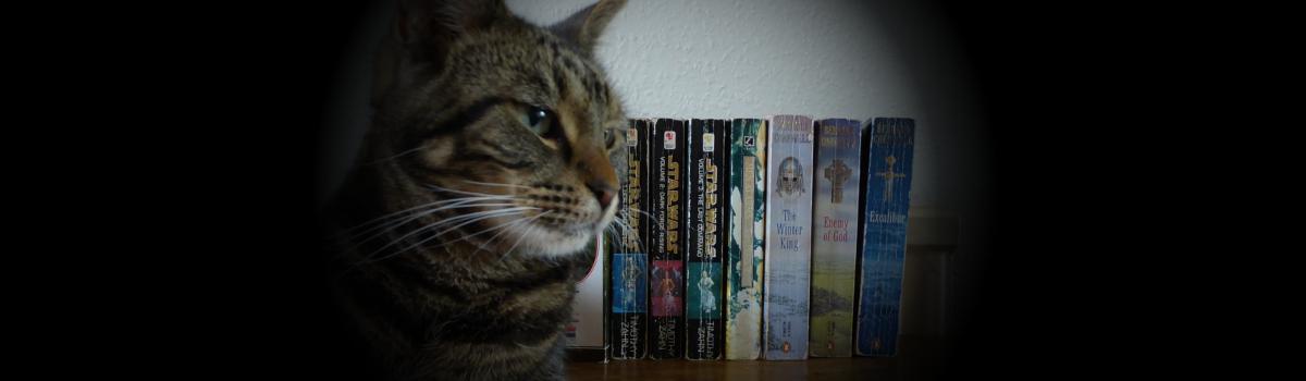 Top Five Novels