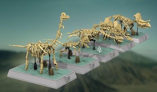 Dinosaurs Fossils Skeletons