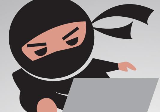 Trademark Ninja Basics