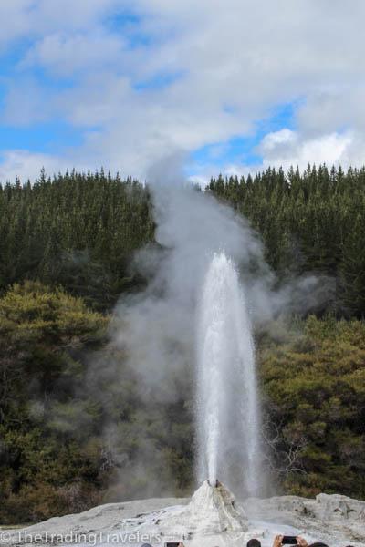 waiotapu geothermal wonderland rotorua