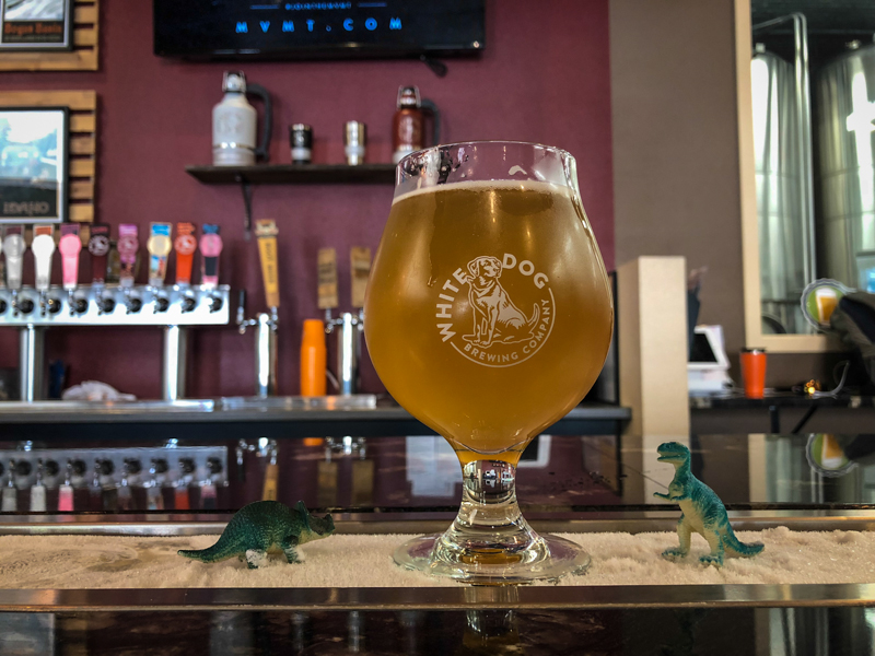 things to do boise idaho brewery