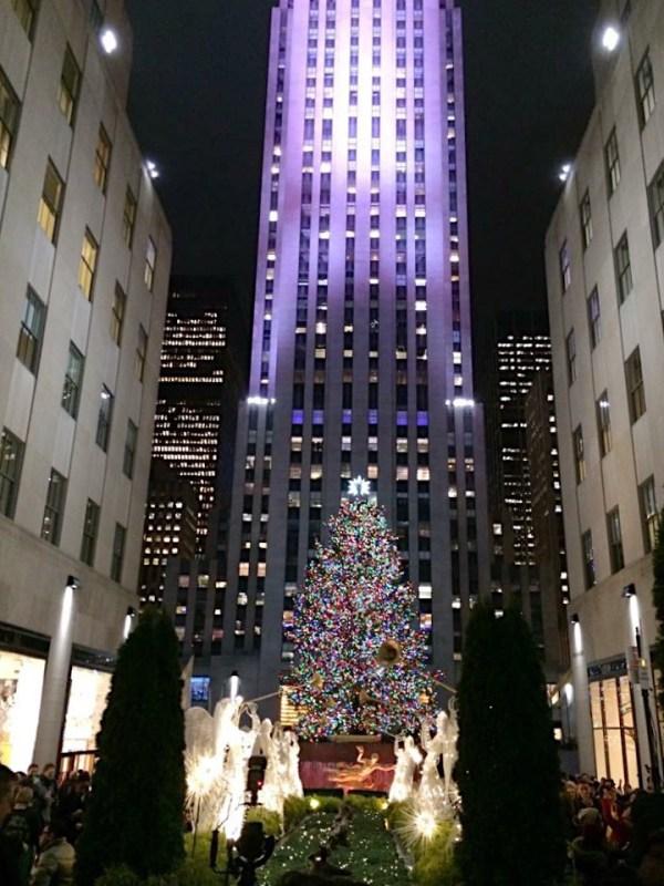 86001208 f8a3 4f05 af4e 3fa029a5ce9d - Christmas in New York - ホリデーシーズンのニューヨーク 街に溢れるクリスマスイルミネーション