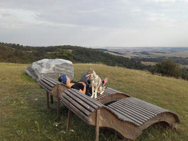 , Volunteering at a Dogsled Farm – Snowdragons, Austria – Part 1 (Guest Post), The Travel Bug Bite