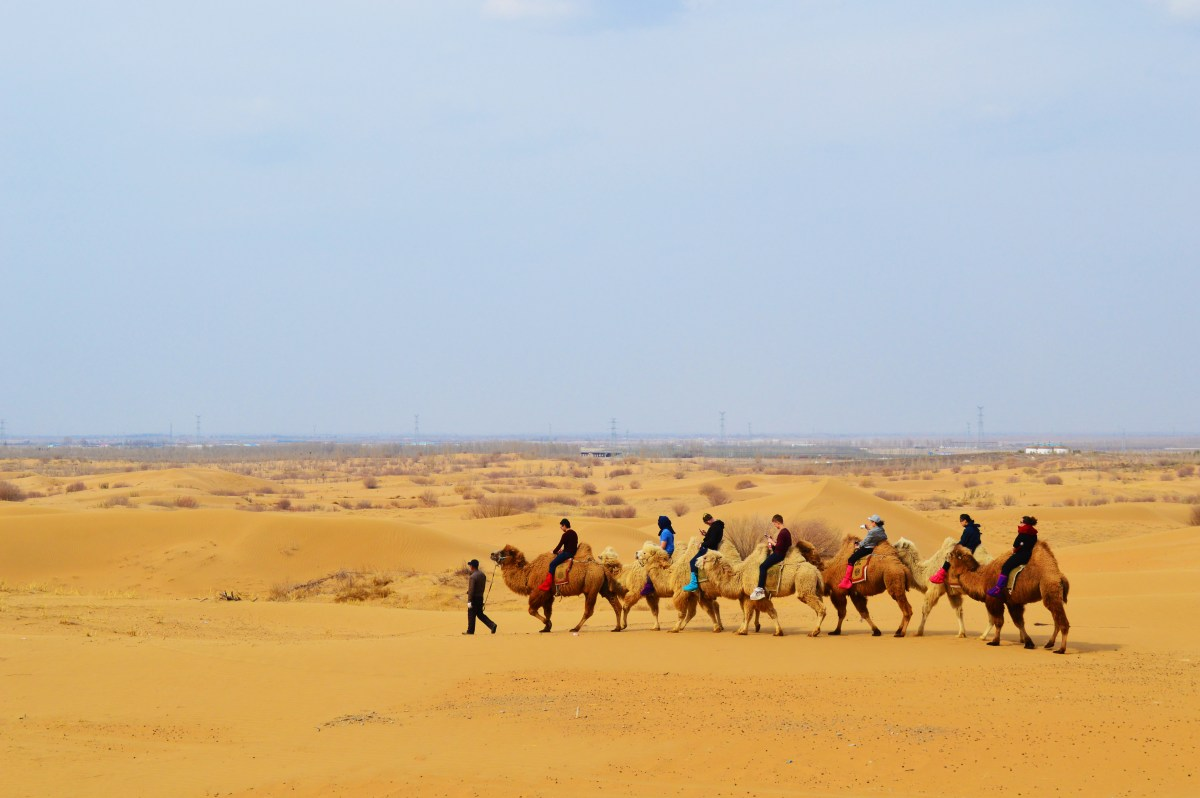Kubuqi Desert Adventures, Inner Mongolia (Photos)