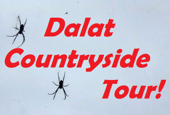 Da Lat Countryside Tour: Rose Garden & Minority Village