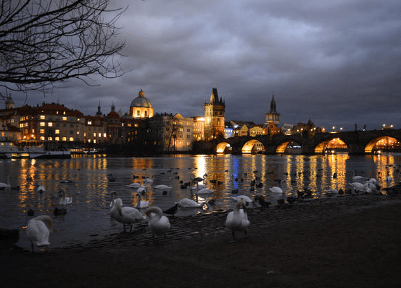 , 15 Breathtaking Photos of the Charles Bridge, The Travel Bug Bite