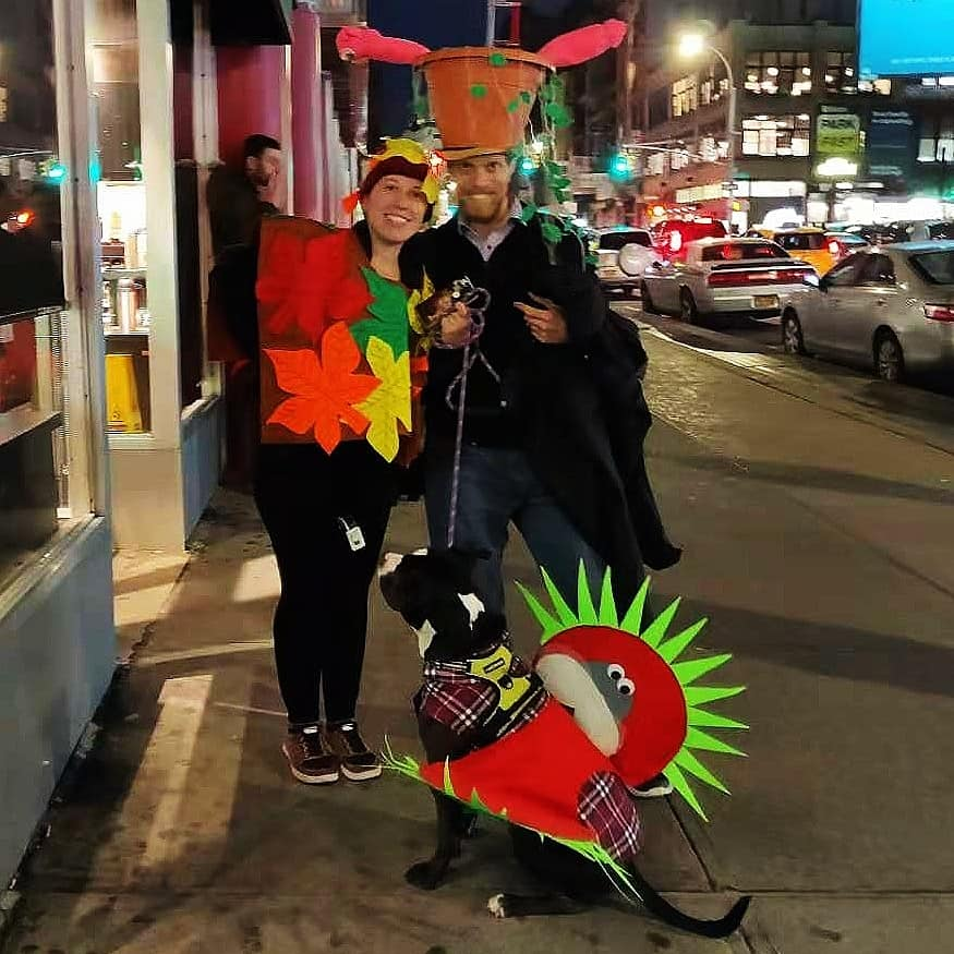 , Don't Scare the Planet on Halloween – Pumpkin Recycling & Other Uses, The Travel Bug Bite