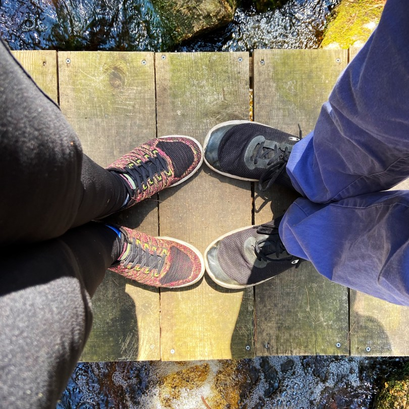 Big River Management Area, Big River Management Area: The Best RI Hiking Spot, The Travel Bug Bite