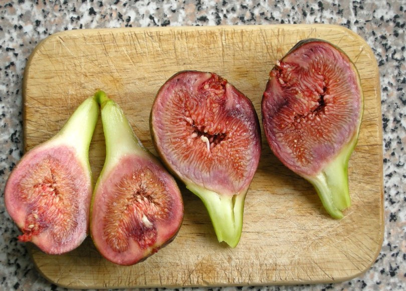 Figs, Figs Contain Dead Wasps: Weird Food Facts, The Travel Bug Bite, The Travel Bug Bite