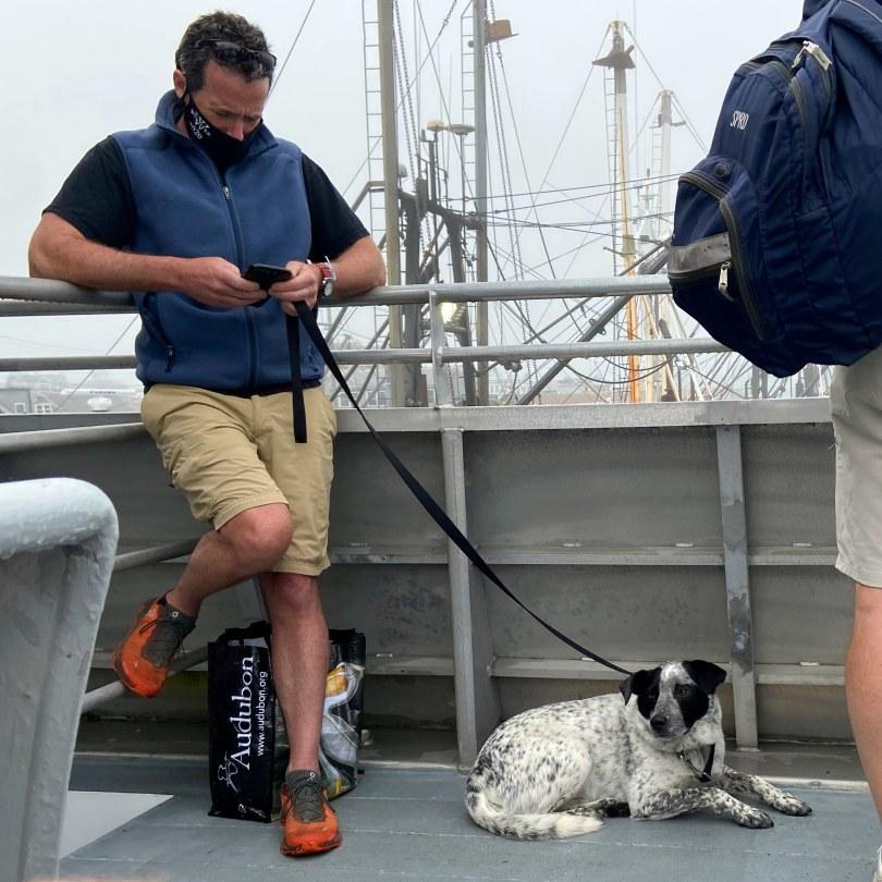 Block Island, Block Island, RI: Visiting During a Pandemic, The Travel Bug Bite, The Travel Bug Bite