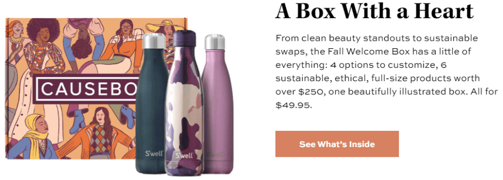 CAUSEBOX, CAUSEBOX vs. FabFitFun: At First Glance Comparison, The Travel Bug Bite