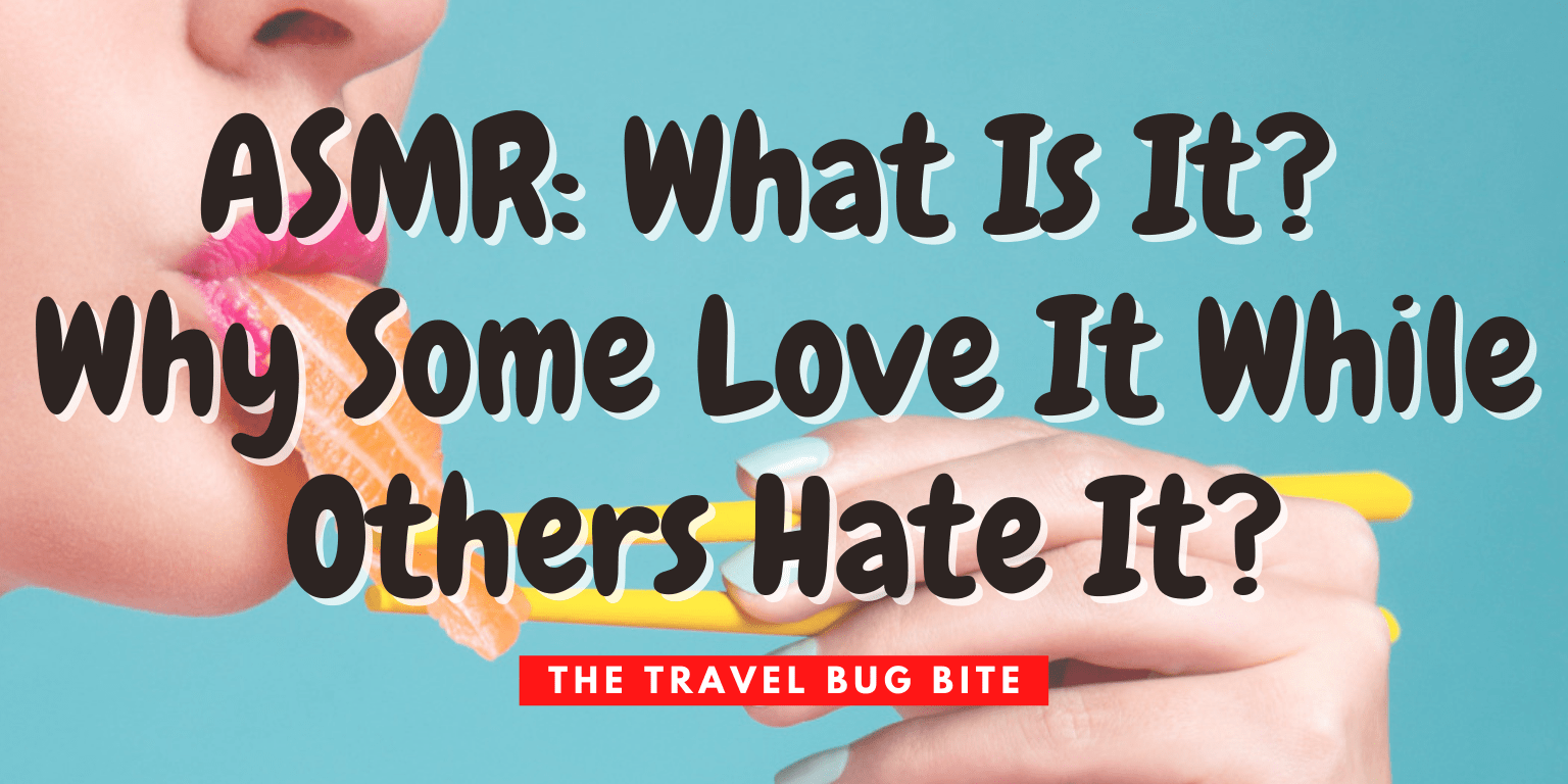 ASMR, ASMR: What Is It? Why Some Love It While Others Hate It?, The Travel Bug Bite