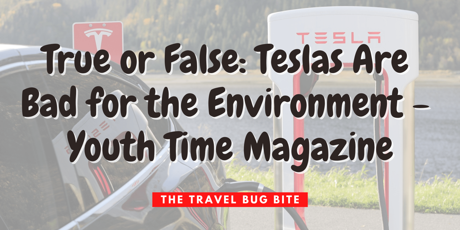 , True or False: Teslas Are Bad for the Environment – Youth Time Magazine, The Travel Bug Bite