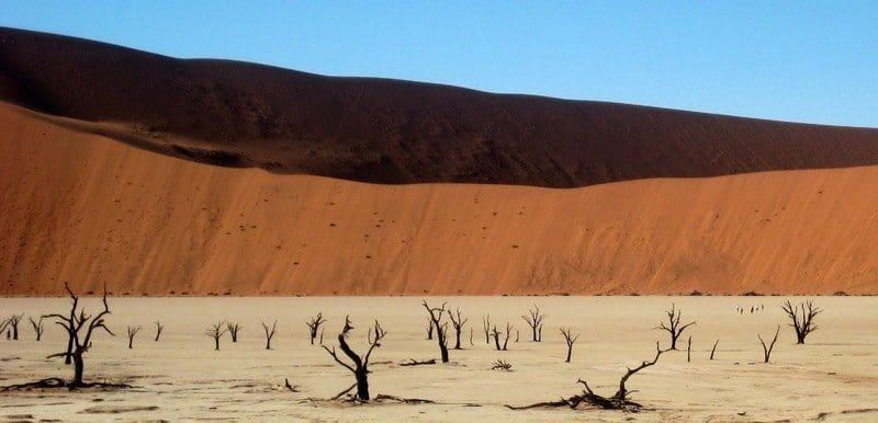 Friday Photo – The Dead Vlei, Namibia