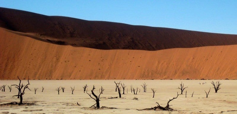 Friday Photo – The Dead Vlei, Namibia