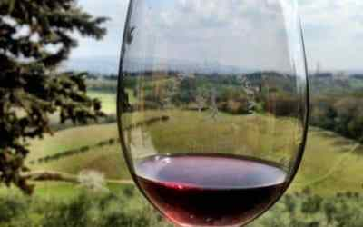 Wine Tasting in Tuscany's Chianti Country