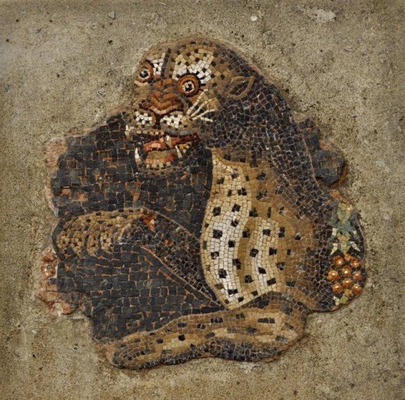 Leopard Mosaic in Delos Museum