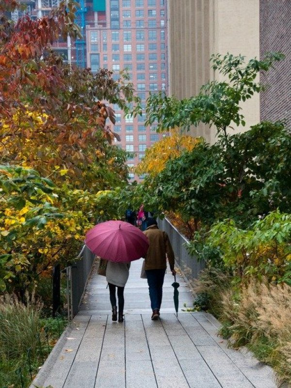 The High Line in the Rain