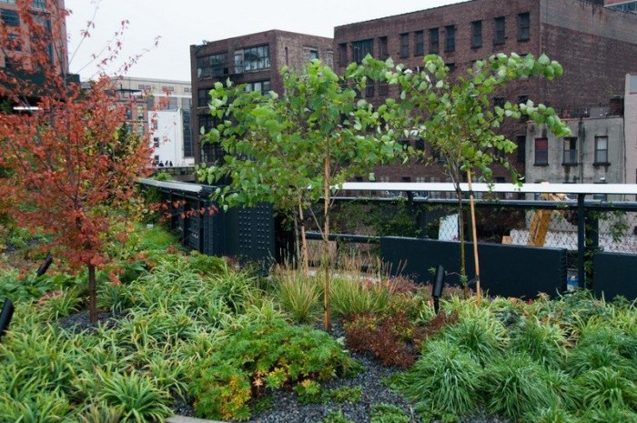 Clever Planting on the High Line