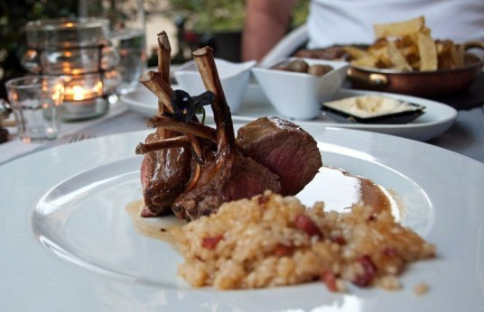 lamb chops risotto